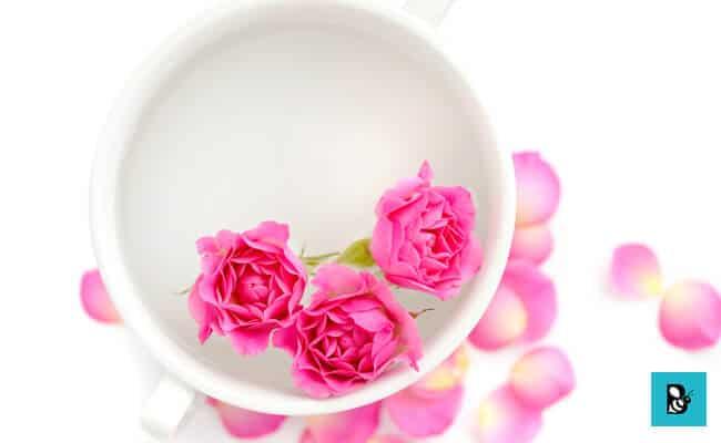 rose petals pink lips healthbeautybee