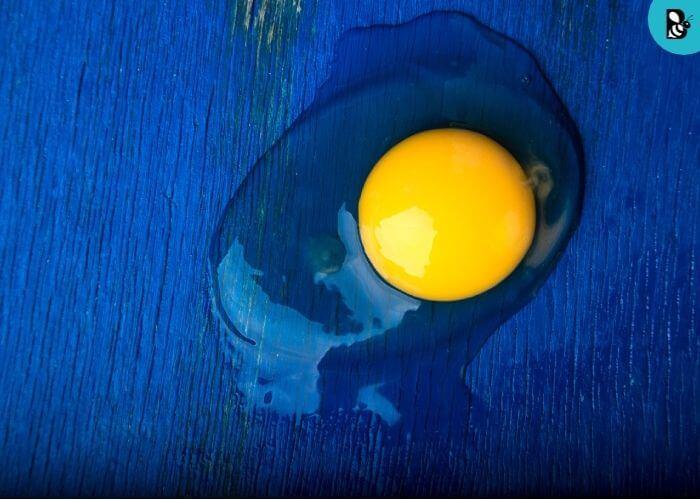 Egg White Healthbeautybee