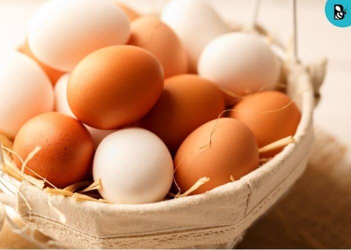 Egg full Healthbeautybee