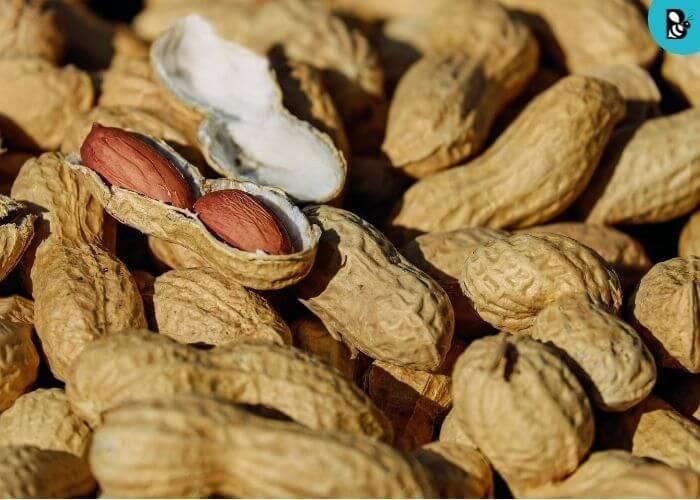 Peanut healthbeautybee
