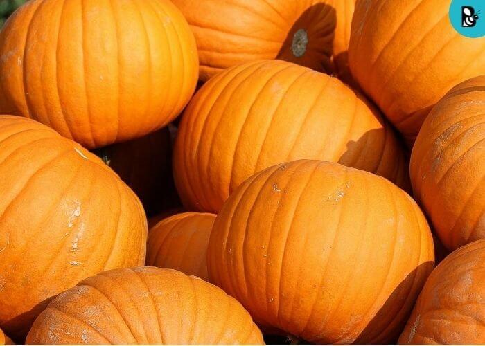 pumpkin healthbeautybee
